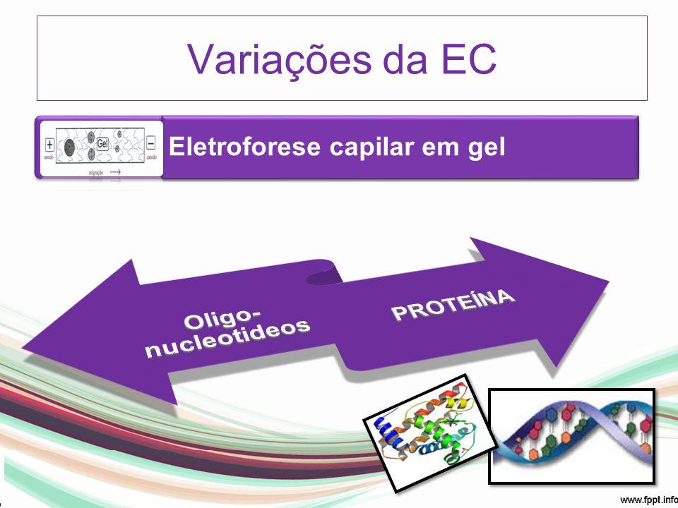 Eletroforese capilar em gel Variações da EC