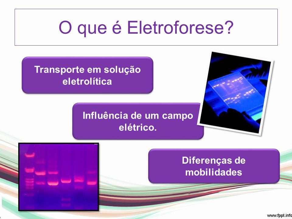 Transporte em solução eletrolítica Influência de um campo elétrico. Diferenças de mobilidades O que é Eletroforese?