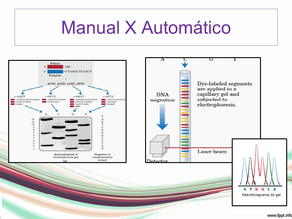 Manual X Automático