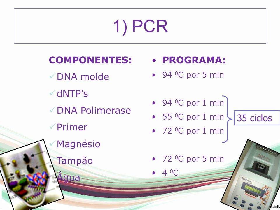 2) Purificação do produto de PCR 3 formasKit GFXEnzimasPEG 8000 1 de 50 ul 2 de 25 ul Volume final 50ul Purificar Eluir 25ul gel de agarose 5ul 2.1) COM KIT: GFX PCR DNA (GE Healthcare)