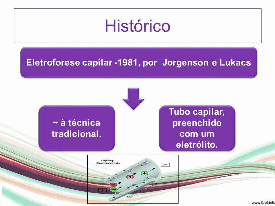 Histórico Eletroforese capilar -1981, por Jorgenson e Lukacs ~ à técnica tradicional. Tubo capilar, preenchido com um eletrólito.