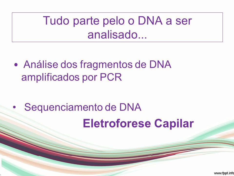 Tudo parte pelo o DNA a ser analisado... Análise dos fragmentos de DNA amplificados por PCR Sequenciamento de DNA Eletroforese Capilar
