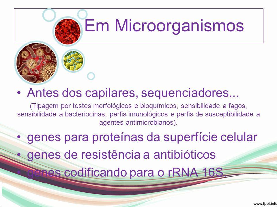 Em Microorganismos Antes dos capilares, sequenciadores... (Tipagem por testes morfológicos e bioquímicos, sensibilidade a fagos, sensibilidade a bacte