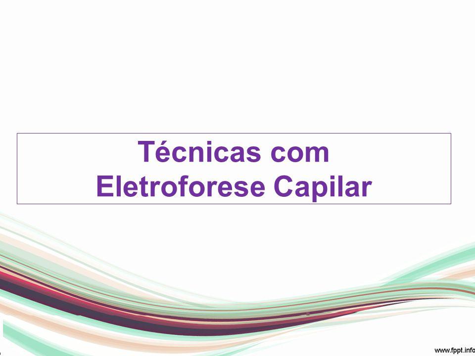 Técnicas com Eletroforese Capilar