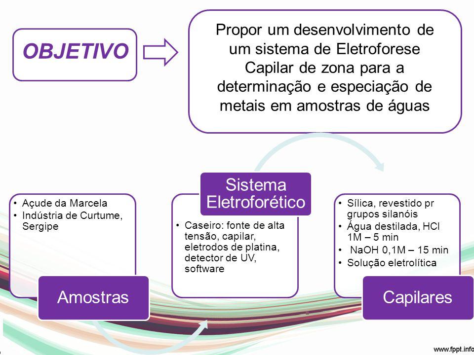 OBJETIVO Propor um desenvolvimento de um sistema de Eletroforese Capilar de zona para a determinação e especiação de metais em amostras de águas Açude