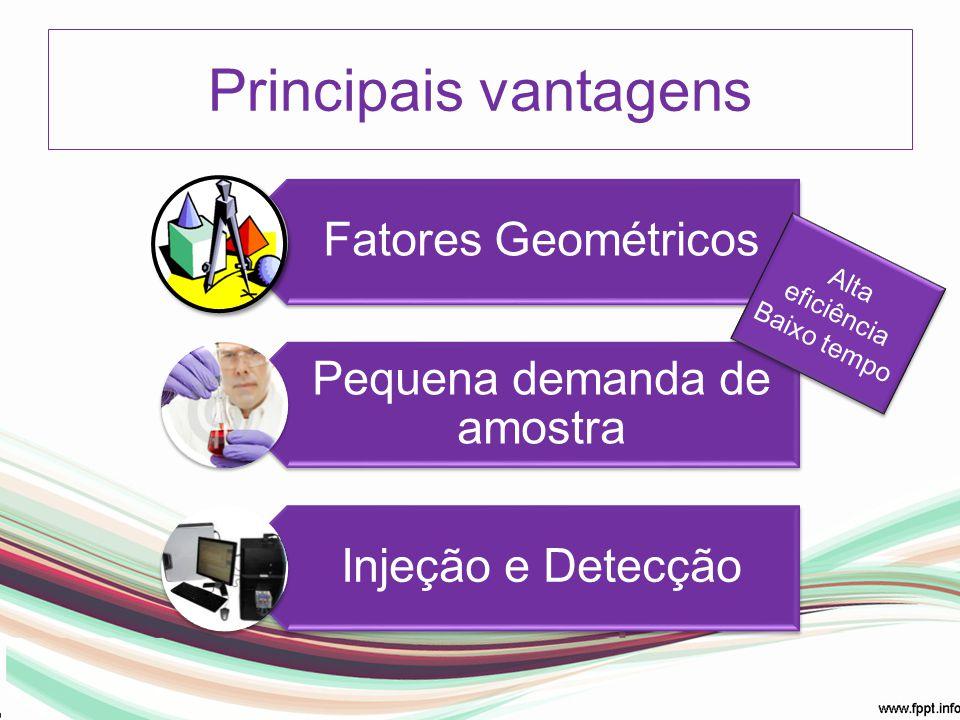 Principais vantagens Fatores Geométricos Pequena demanda de amostra Injeção e Detecção Alta eficiência Baixo tempo