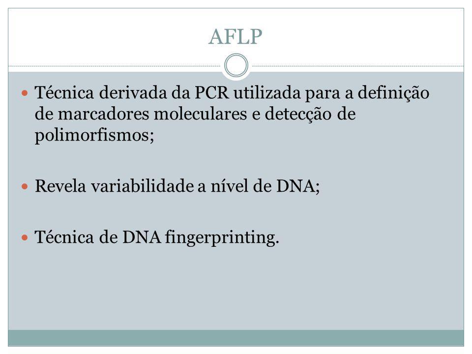 AFLP Técnica derivada da PCR utilizada para a definição de marcadores moleculares e detecção de polimorfismos; Revela variabilidade a nível de DNA; Té