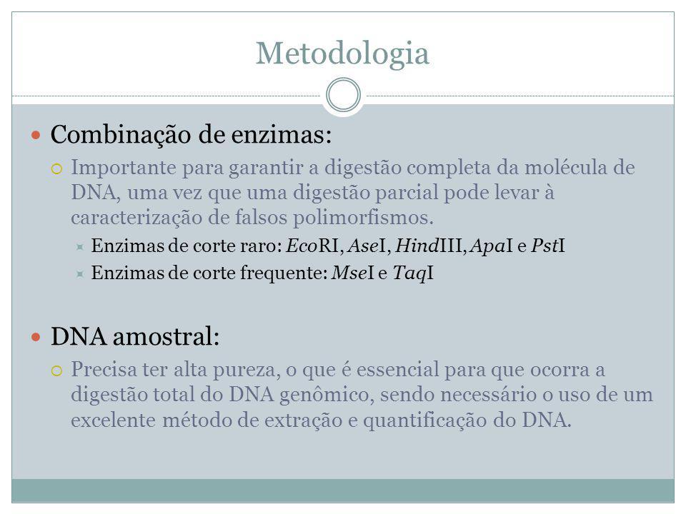 Combinação de enzimas: Importante para garantir a digestão completa da molécula de DNA, uma vez que uma digestão parcial pode levar à caracterização d