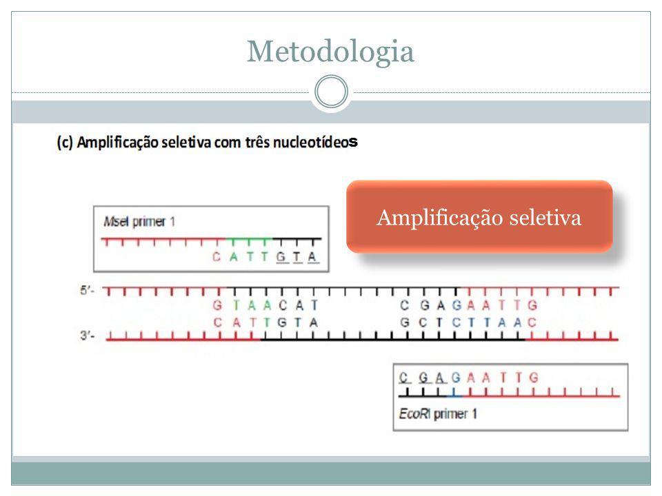 Metodologia s Amplificação seletiva