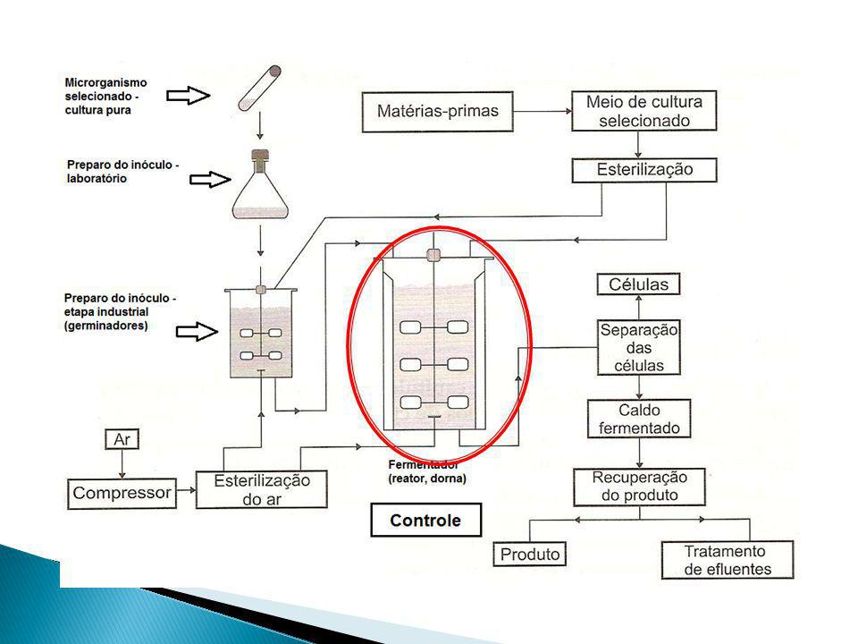 Biorreatores Denominam-se biorreatores, reatores bioquímicos ou reatores biológicos, os reatores químicos nos quais ocorrem uma série de reações químicas catalisadas por biocatalisadores.