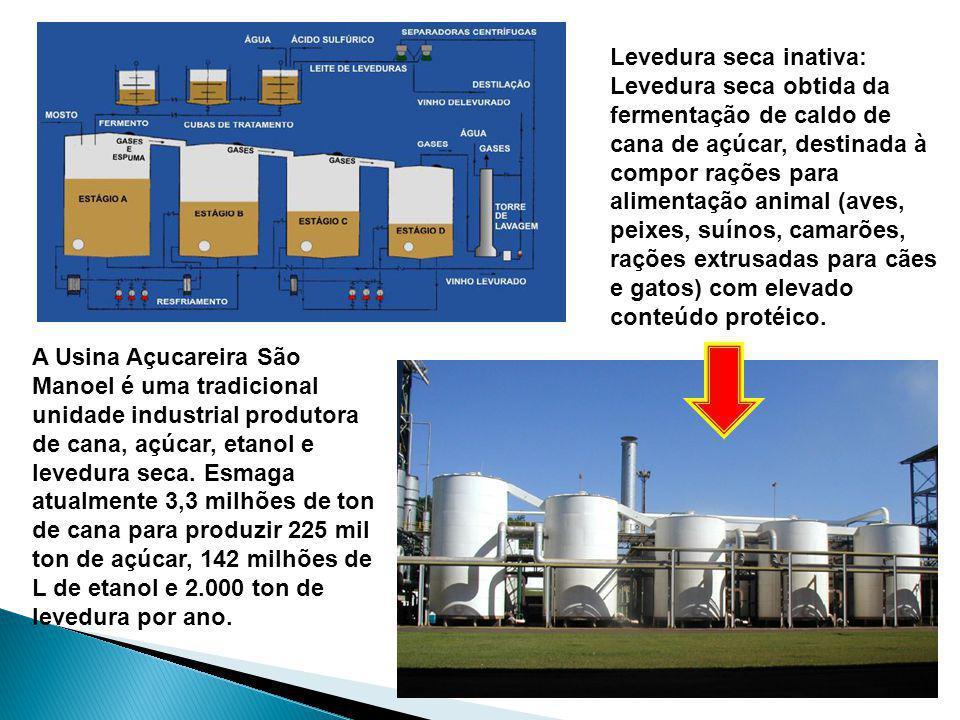 A Usina Açucareira São Manoel é uma tradicional unidade industrial produtora de cana, açúcar, etanol e levedura seca. Esmaga atualmente 3,3 milhões de