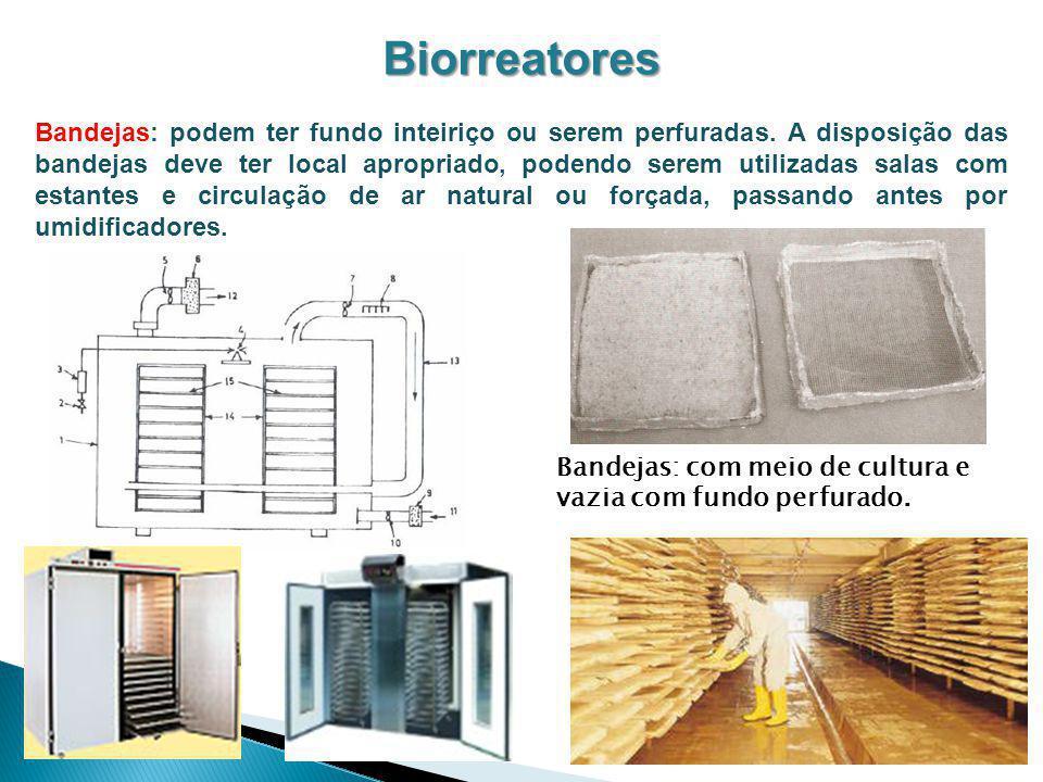 Biorreatores Bandejas: podem ter fundo inteiriço ou serem perfuradas. A disposição das bandejas deve ter local apropriado, podendo serem utilizadas sa