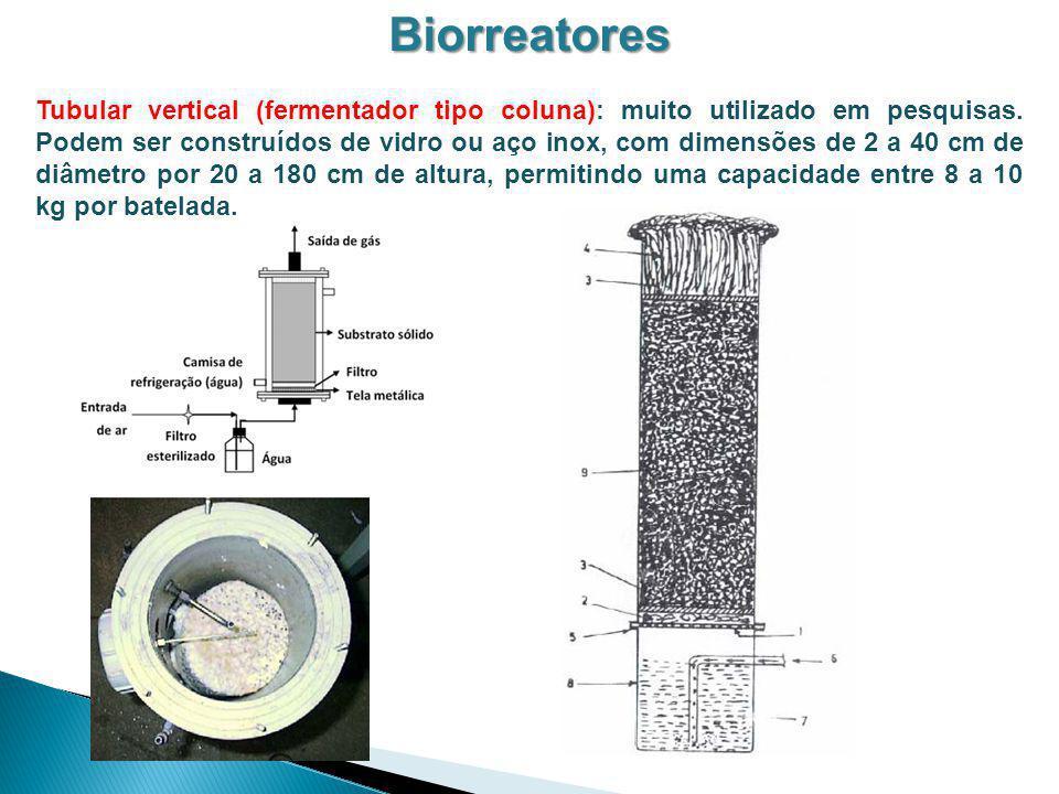 Biorreatores Tubular vertical (fermentador tipo coluna): muito utilizado em pesquisas. Podem ser construídos de vidro ou aço inox, com dimensões de 2