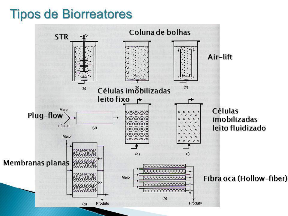 STR Coluna de bolhas Air-lift Plug-flow Células imobilizadas leito fixo Membranas planas Fibra oca (Hollow-fiber) Células imobilizadas leito fluidizad