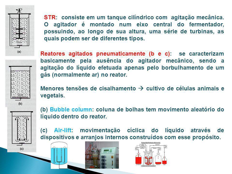 Biorreatores Bandejas: podem ter fundo inteiriço ou serem perfuradas.