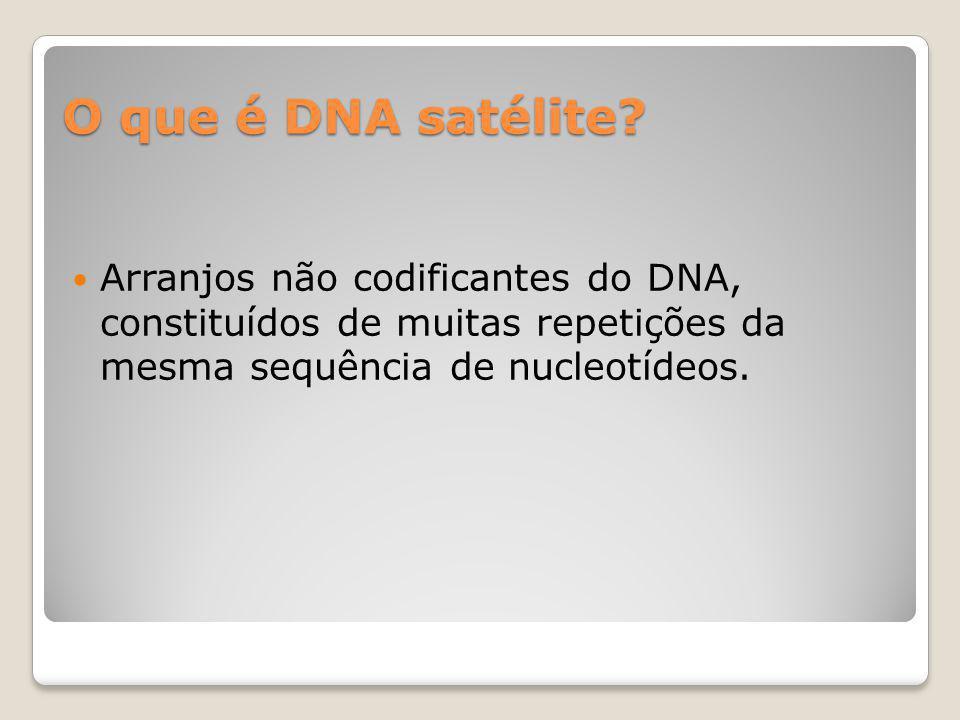 O que é DNA satélite? Arranjos não codificantes do DNA, constituídos de muitas repetições da mesma sequência de nucleotídeos.