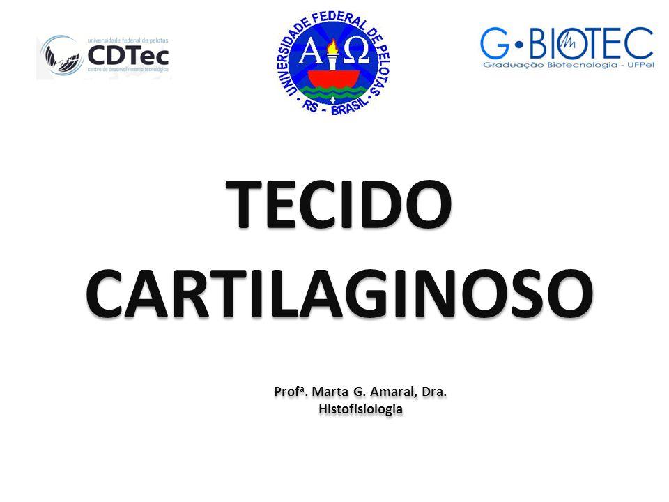 TECIDO CARTILAGINOSO Prof a.Marta G. Amaral, Dra.