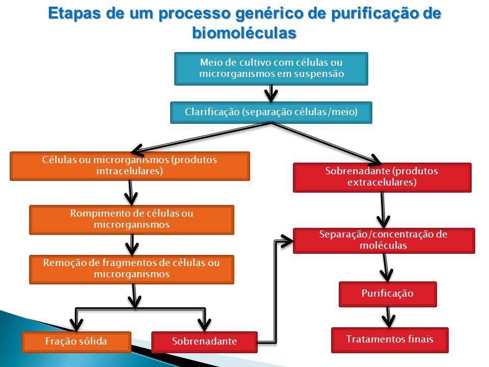 Meio de cultivo com células ou microrganismos em suspensão Clarificação (separação células/meio) Células ou microrganismos (produtos intracelulares) S