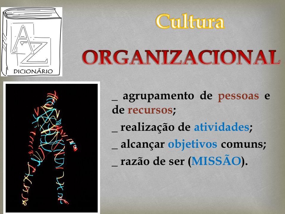 _ agrupamento de pessoas e de recursos; _ realização de atividades; _ alcançar objetivos comuns; _ razão de ser (MISSÃO).