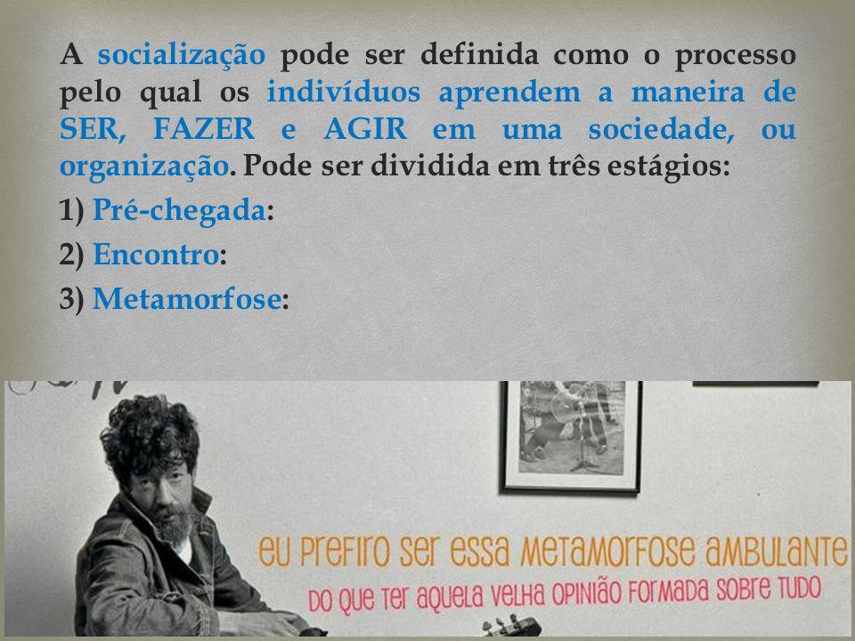 A socialização pode ser definida como o processo pelo qual os indivíduos aprendem a maneira de SER, FAZER e AGIR em uma sociedade, ou organização. Pod