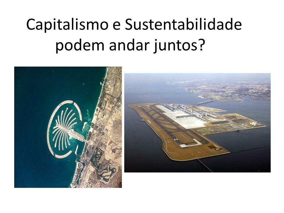 Capitalismo e Sustentabilidade podem andar juntos?