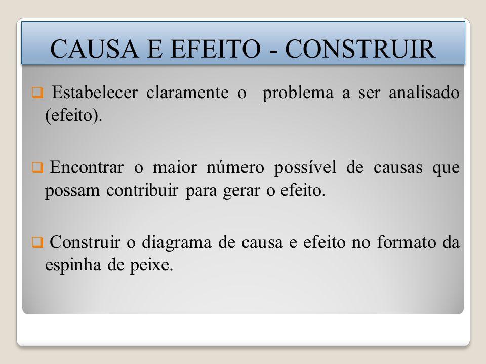 Estabelecer claramente o problema a ser analisado (efeito).