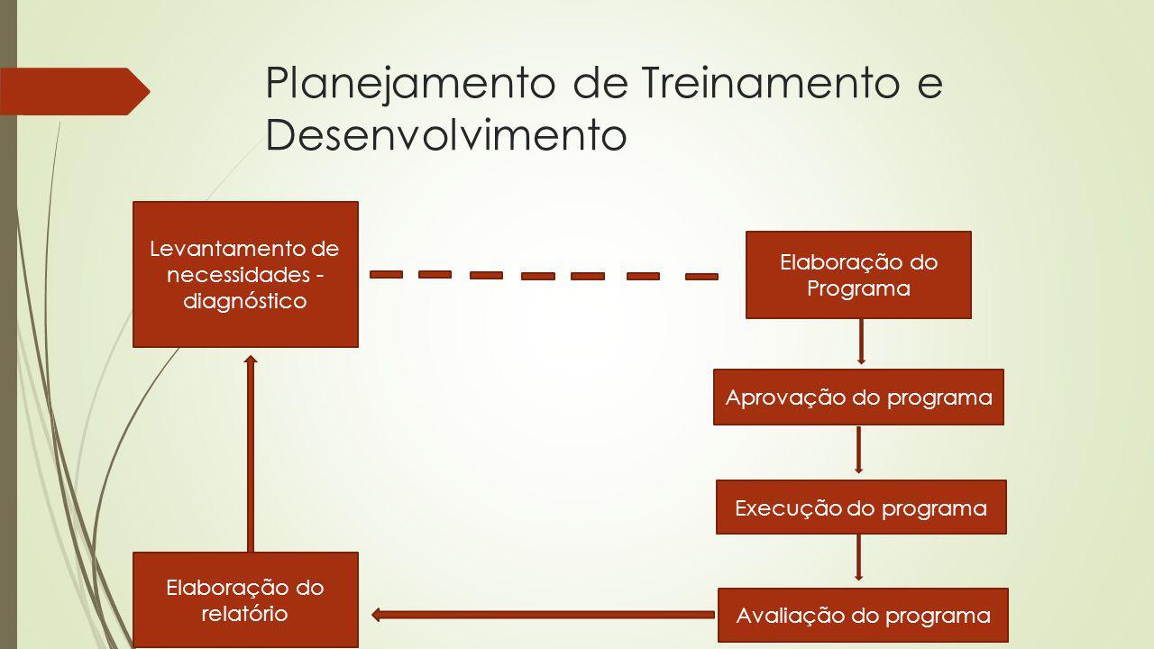 Planejamento de Treinamento e Desenvolvimento Levantamento de necessidades - diagnóstico Elaboração do Programa Elaboração do relatório Aprovação do p
