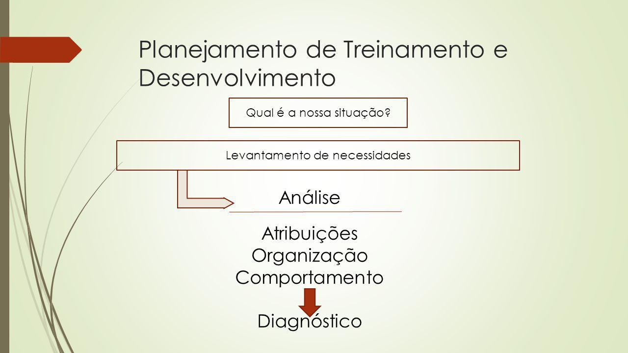 Planejamento de Treinamento e Desenvolvimento Qual é a nossa situação? Levantamento de necessidades Análise Atribuições Organização Comportamento Diag