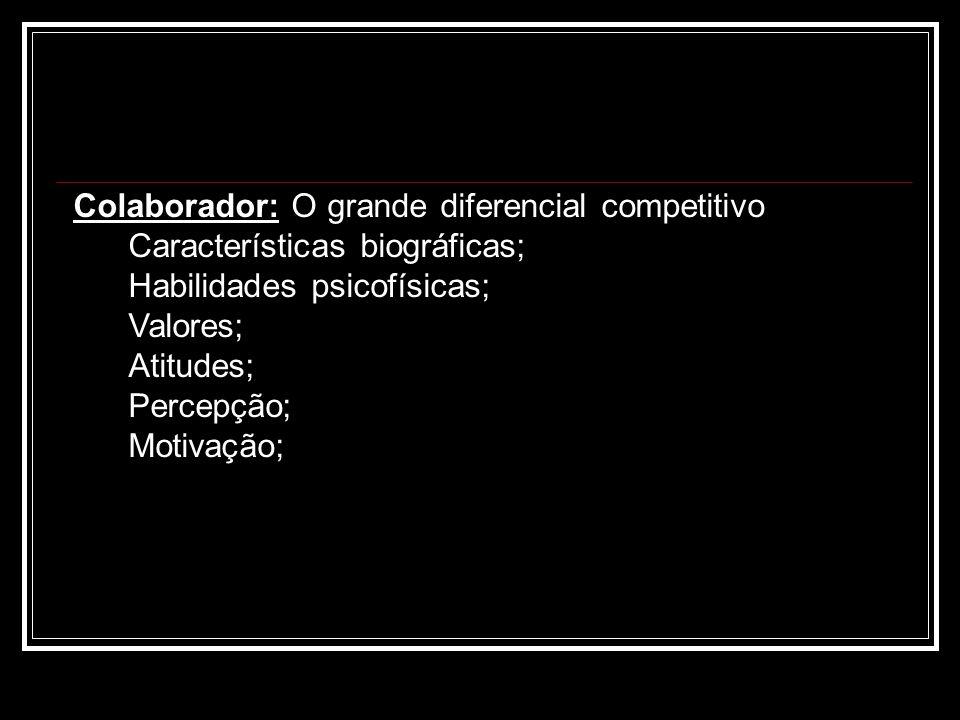 Colaborador: O grande diferencial competitivo Características biográficas; Habilidades psicofísicas; Valores; Atitudes; Percepção; Motivação;