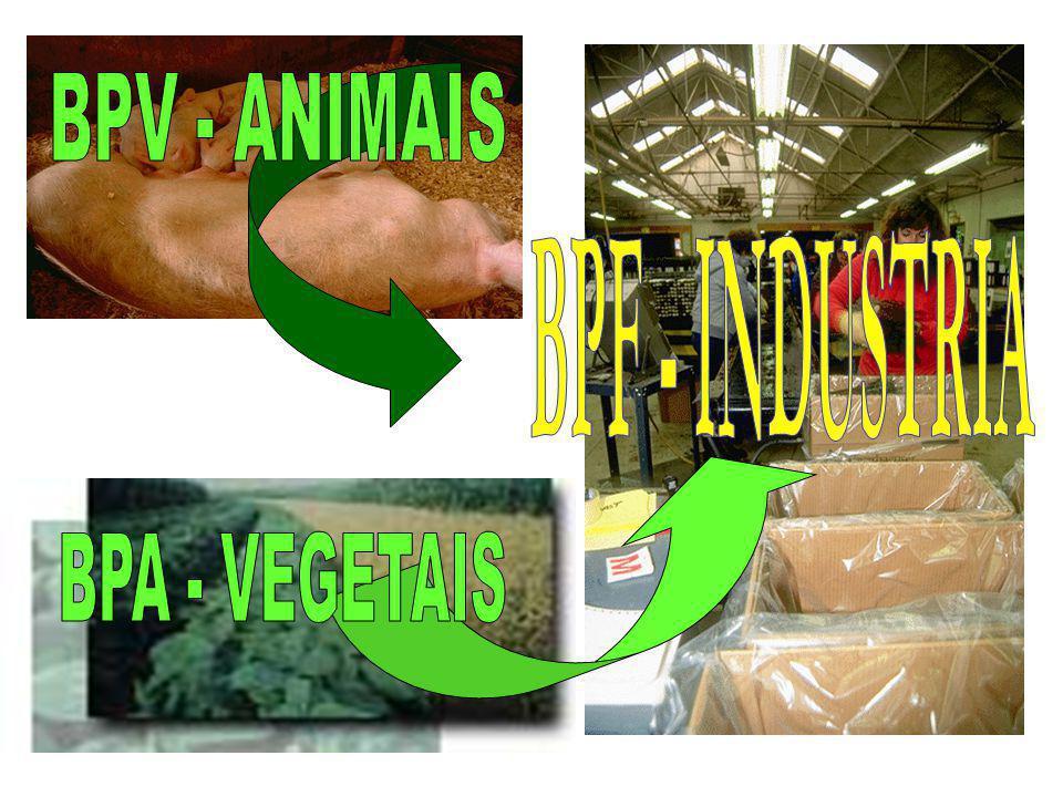 Questões de Qualidade na produção agropecuária - Prioridade na agenda política - Prioridade na agenda técnica - Crítico para a segurança de alimentos
