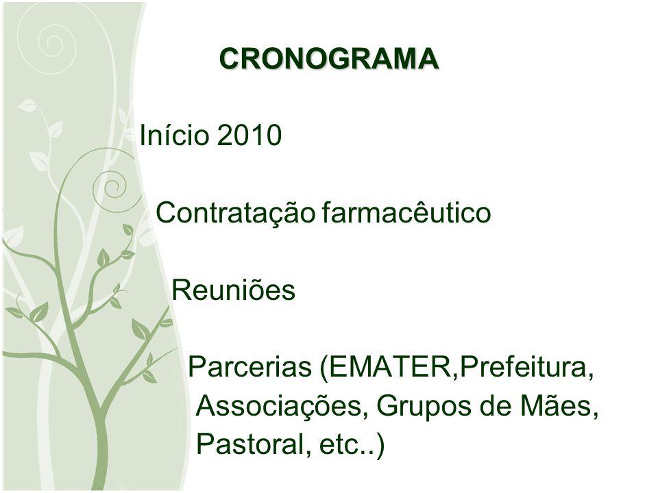 CRONOGRAMA Início 2010 Contratação farmacêutico Reuniões Parcerias (EMATER,Prefeitura, Associações, Grupos de Mães, Pastoral, etc..)
