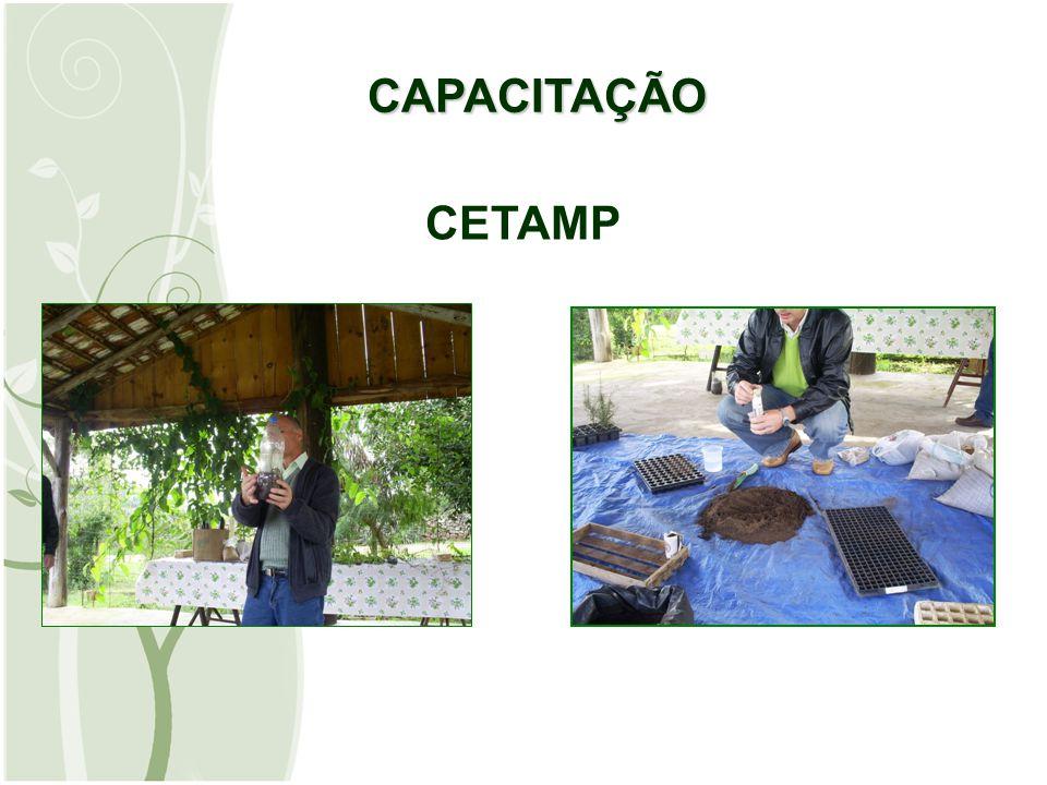 CAPACITAÇÃO CAPACITAÇÃO CETAMP