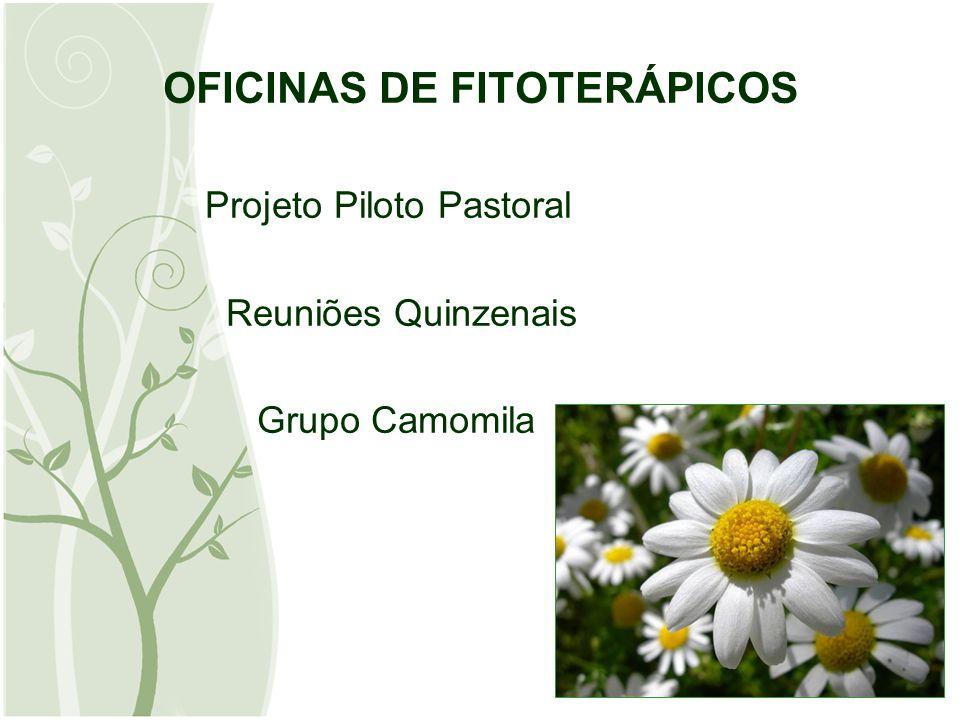 OFICINAS DE FITOTERÁPICOS