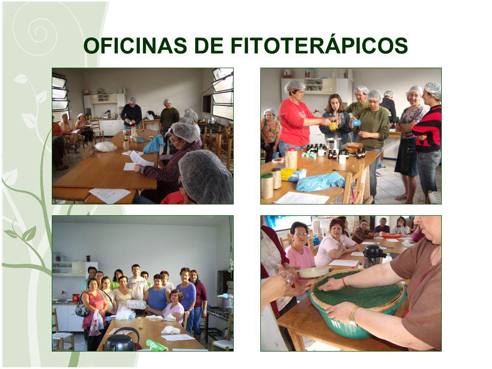 EVENTOS Festa da Integração Dia da Mulher Conferência Municipal de Saúde Visita a Itaipú