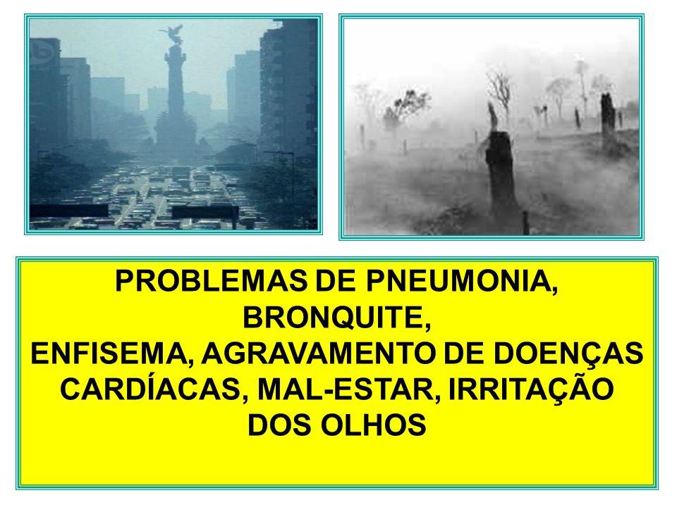 PROBLEMAS DE PNEUMONIA, BRONQUITE, ENFISEMA, AGRAVAMENTO DE DOENÇAS CARDÍACAS, MAL-ESTAR, IRRITAÇÃO DOS OLHOS