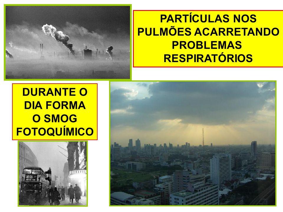 PARTÍCULAS NOS PULMÕES ACARRETANDO PROBLEMAS RESPIRATÓRIOS DURANTE O DIA FORMA O SMOG FOTOQUÍMICO