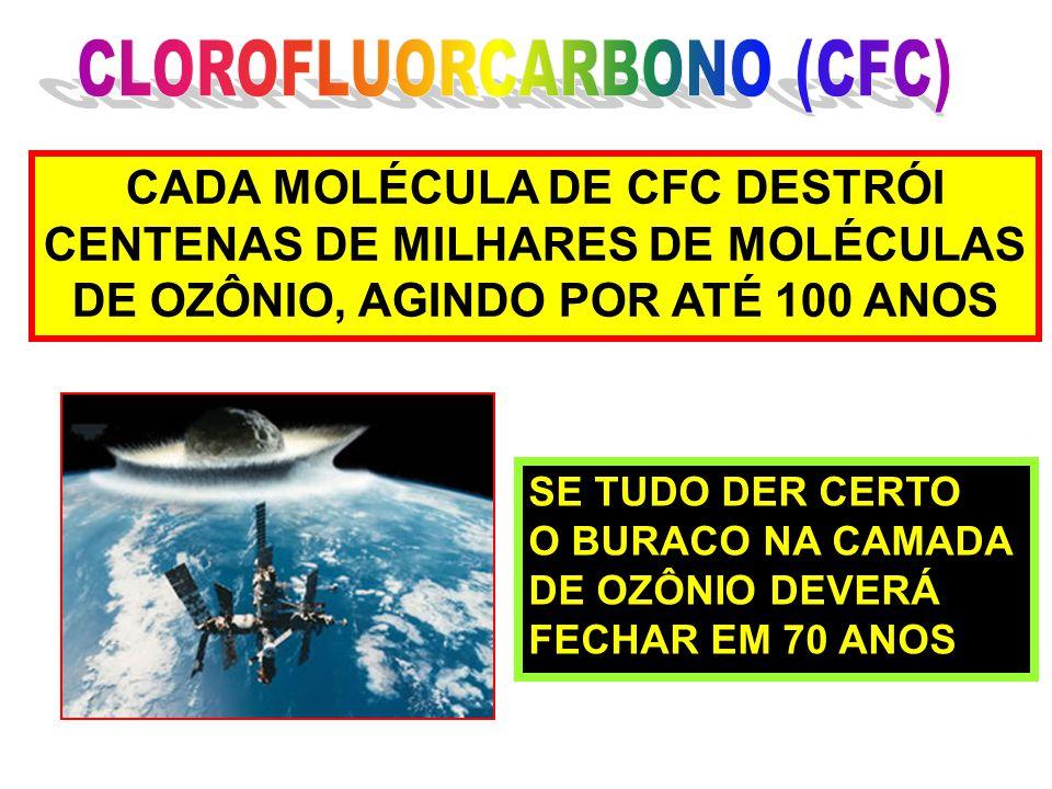 CADA MOLÉCULA DE CFC DESTRÓI CENTENAS DE MILHARES DE MOLÉCULAS DE OZÔNIO, AGINDO POR ATÉ 100 ANOS SE TUDO DER CERTO O BURACO NA CAMADA DE OZÔNIO DEVER