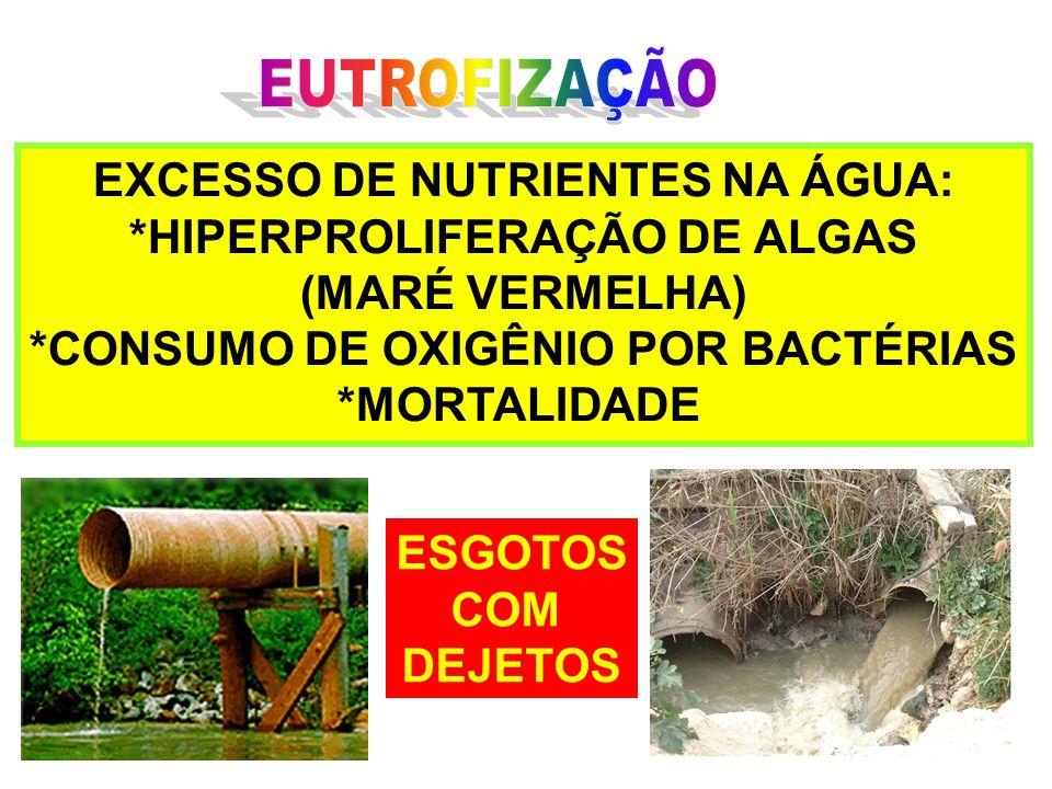 EXCESSO DE NUTRIENTES NA ÁGUA: *HIPERPROLIFERAÇÃO DE ALGAS (MARÉ VERMELHA) *CONSUMO DE OXIGÊNIO POR BACTÉRIAS *MORTALIDADE ESGOTOS COM DEJETOS