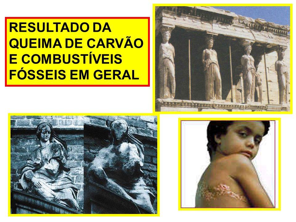 RESULTADO DA QUEIMA DE CARVÃO E COMBUSTÍVEIS FÓSSEIS EM GERAL