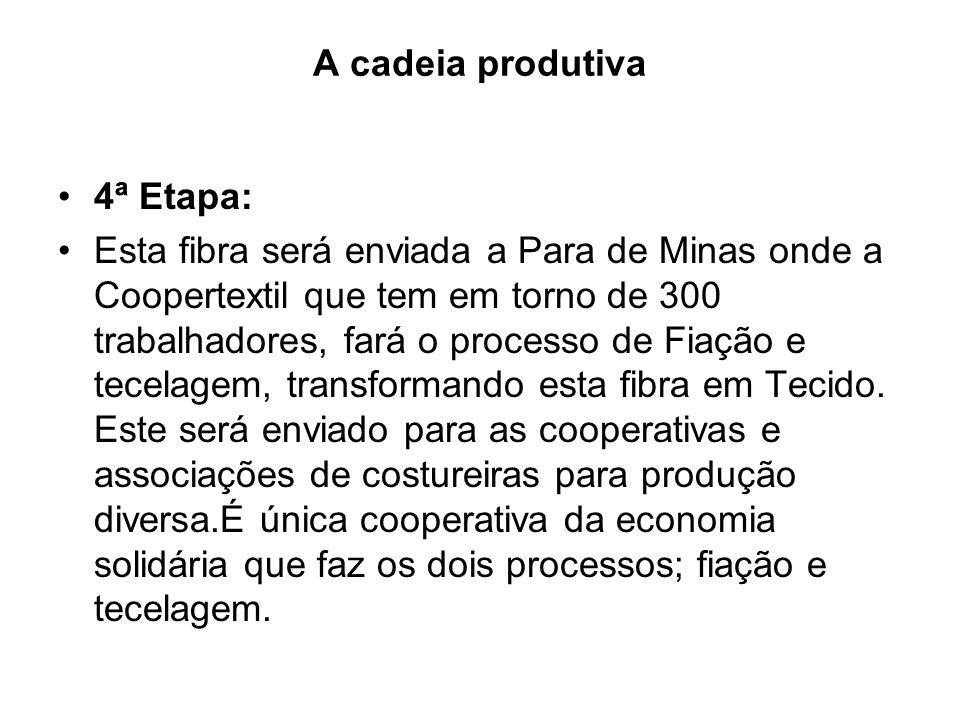 A cadeia produtiva 4ª Etapa: Esta fibra será enviada a Para de Minas onde a Coopertextil que tem em torno de 300 trabalhadores, fará o processo de Fia