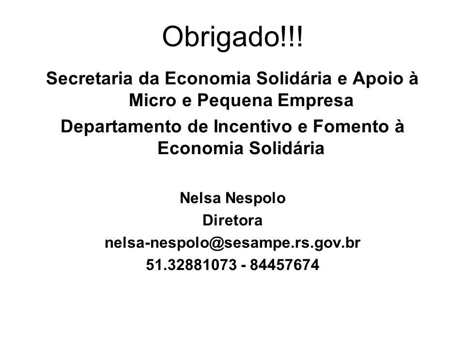 Obrigado!!! Secretaria da Economia Solidária e Apoio à Micro e Pequena Empresa Departamento de Incentivo e Fomento à Economia Solidária Nelsa Nespolo