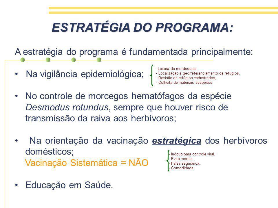 ESTRATÉGIA DO PROGRAMA: A estratégia do programa é fundamentada principalmente: Na vigilância epidemiológica; No controle de morcegos hematófagos da espécie Desmodus rotundus, sempre que houver risco de transmissão da raiva aos herbívoros; - Leitura de mordeduras, - Localização e georreferenciamento de refúgios, - Revisão de refúgios cadastrados, - Colheita de materiais suspeitos Na orientação da vacinação estratégica dos herbívoros domésticos; Vacinação Sistemática = NÃO Educação em Saúde.