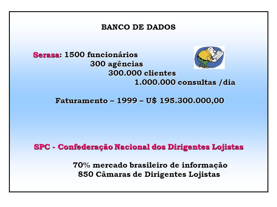 Início Proteção ao crédito Atualmente negócio movimenta grandes somas patrimoniais Serasa: jan. a dez. 2003 24,1 milhões entraram na base de dados 17,