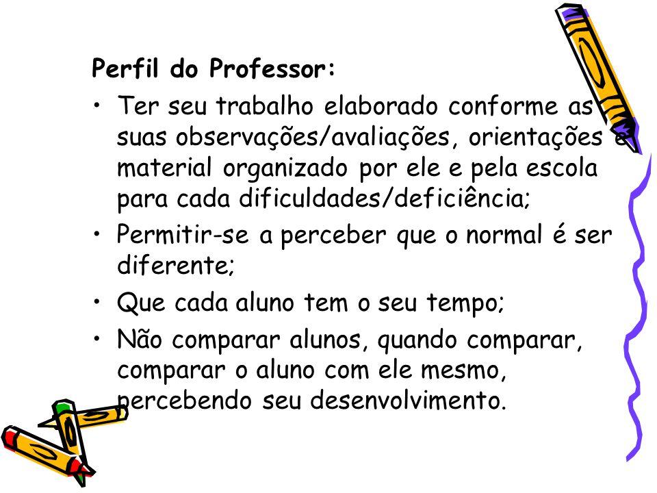 Perfil do Professor: Ter seu trabalho elaborado conforme as suas observações/avaliações, orientações e material organizado por ele e pela escola para