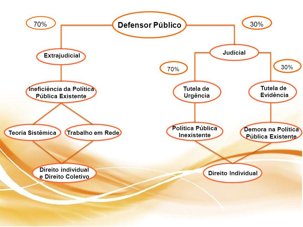 Defensor Público Judicial Teoria SistêmicaTrabalho em Rede Ineficiência da Política Pública Existente Direito individual e Direito Coletivo Tutela de