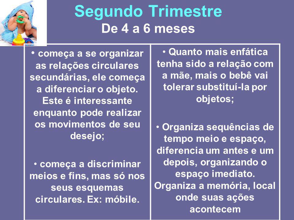 Segundo Trimestre De 4 a 6 meses começa a se organizar as relações circulares secundárias, ele começa a diferenciar o objeto. Este é interessante enqu
