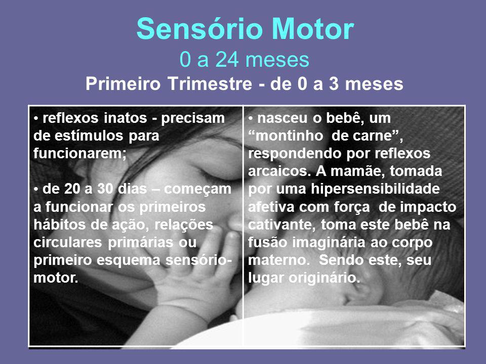 Sensório Motor 0 a 24 meses Primeiro Trimestre - de 0 a 3 meses reflexos inatos - precisam de estímulos para funcionarem; de 20 a 30 dias – começam a