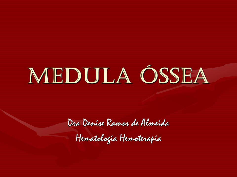 MEDULA ÓSSEA Dra Denise Ramos de Almeida Hematologia Hemoterapia