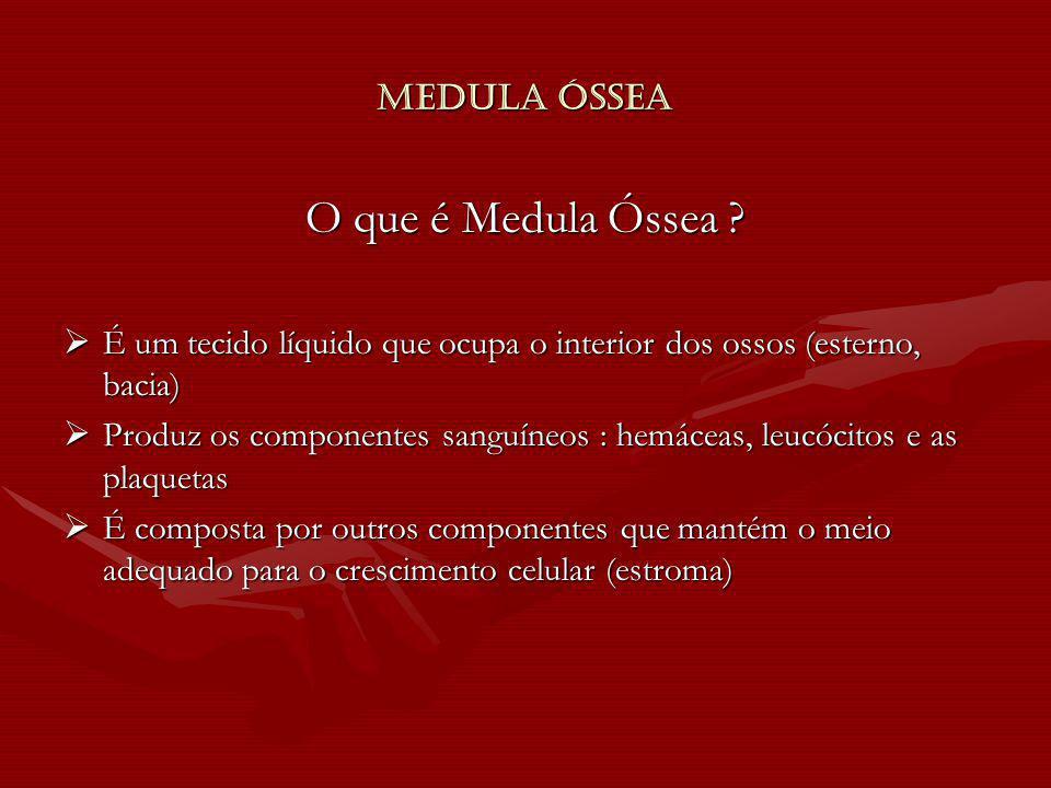 Medula Óssea O que é Medula Óssea ? É um tecido líquido que ocupa o interior dos ossos (esterno, bacia) É um tecido líquido que ocupa o interior dos o