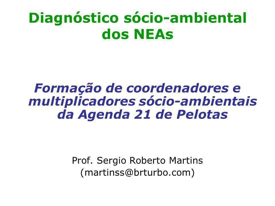 Diagnóstico sócio-ambiental dos NEAs Formação de coordenadores e multiplicadores sócio-ambientais da Agenda 21 de Pelotas Prof.
